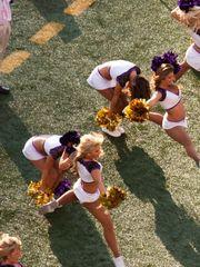 Texans Ravens Cheerleaders - Free..