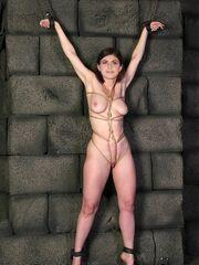Alexandra Daddario Naked Naked Boobies..