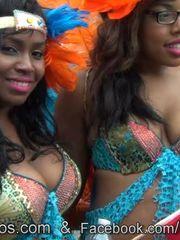 Spectacular ebony nymphs from trinidad..