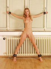 diverse Geilheit Blondie Porno Jpg