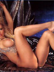 WWE Diva Kaitlyn (Celeste Bonin-Braun)..